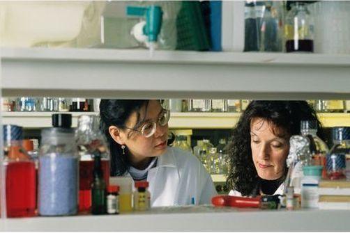 Les chercheurs optimistes quant à la mise au point d'un traitement anti-VIH curatif