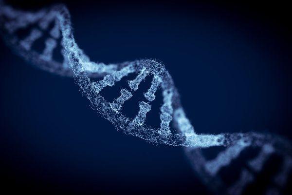 donnees-secondaires-genetiques-wd