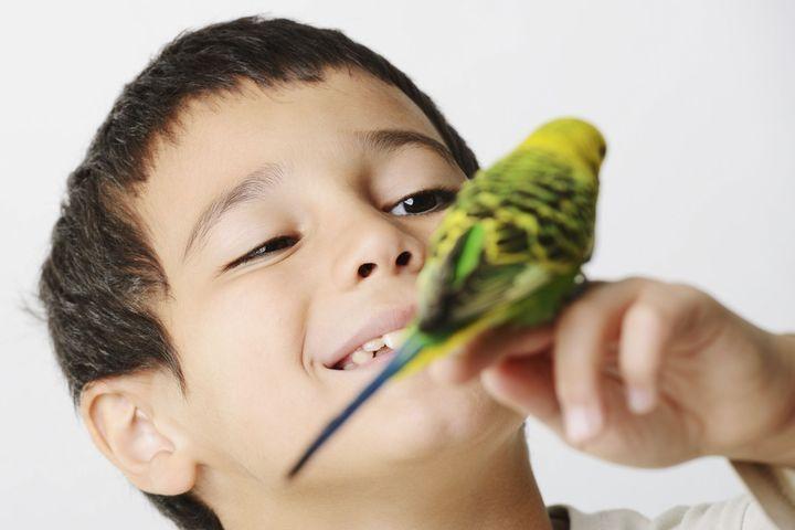 apprendre à siffler et à parler