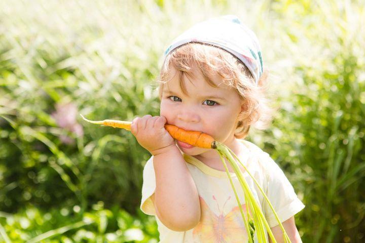 mon-enfant-veut-devenir-vegetarien