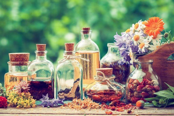 Phytothérapie digestive