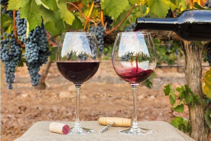 Le vin bon pour le cœur