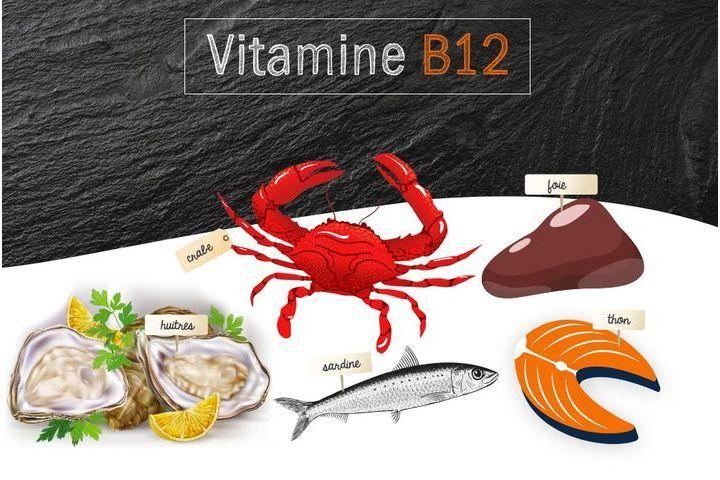 Vitamine B12 ou cobalamine