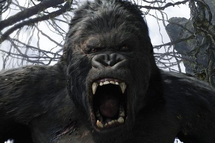 rever-de-gorille