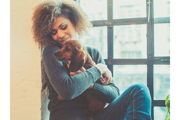 depression-animal-zootherapie