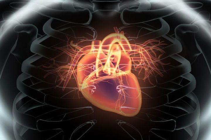 scintigraphie-cardiaque