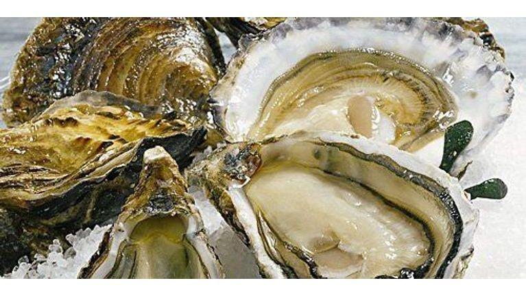 Quiz Produits de la mer