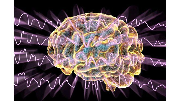 Et si c'était la maladie d'Alzheimer ?
