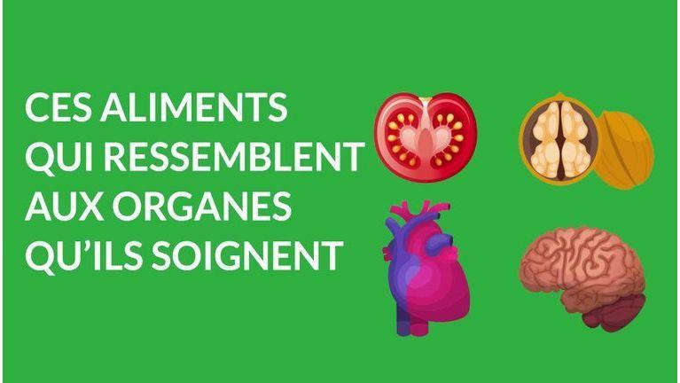 aliments qui ressemblent aux organes qu'ils soignent