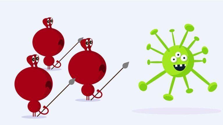 vaccins fonctionnement