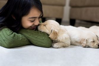6 bonnes raisons d'avoir un chien à la maison