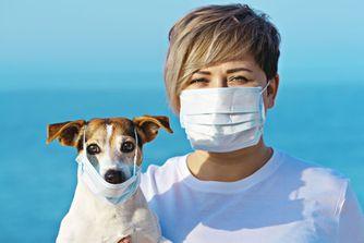 Aucune preuve que les animaux transmettent le coronavirus