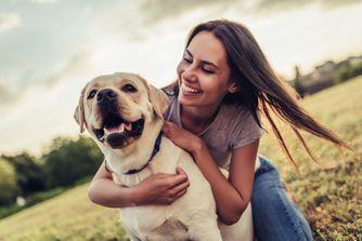 Quels sont les chiens préférés des Français ?