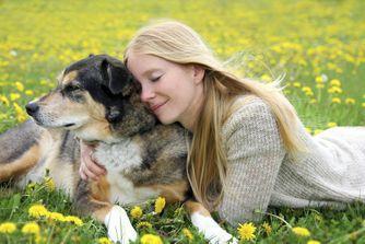 """Les secrets des """"chiens centenaires"""""""