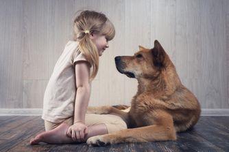 Aider son enfant à surmonter la perte d'un animal de compagnie