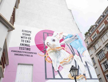 Dove et The Body Shop s'allient pour lutter contre les tests sur les animaux