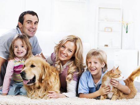 Présenter le chat aux autres membres de la famille