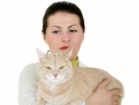 Faire une analyse pour chat, une démarche souvent salutaire