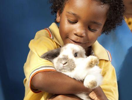Le lapin est-il sans danger pour mon enfant ?