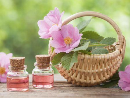 L'huile de rose musquée, en soin anti-âge et contre les vergetures