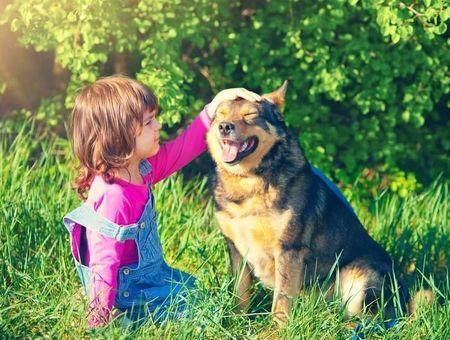 Que représente l'animal pour l'enfant ?