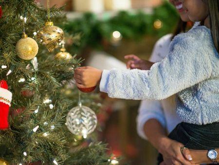 Confinement : y aura-t-il des sapins à Noël ? Les professionnels s'inquiètent