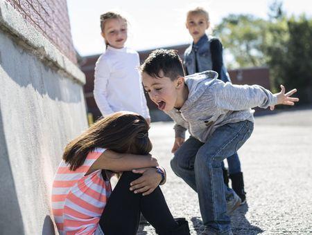 5 novembre : Journée nationale de lutte contre le harcèlement à l'école