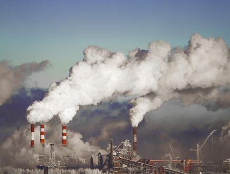 L'intoxication à la dioxine : quels effets ?
