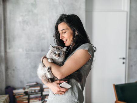 Allergie au chat : symptômes, désensibilisation et traitements