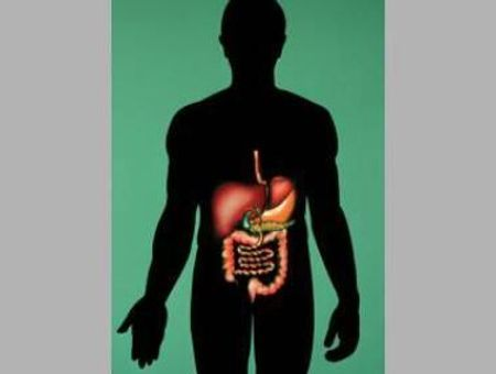 Test de détection de sang dans les selles