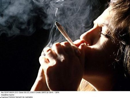 Mieux appréhender le problème du cannabis ?