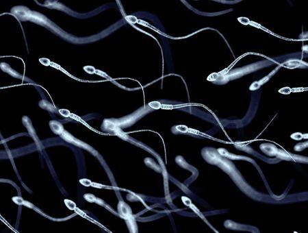 L'allergie au sperme : symptômes, fréquence, traitement, grossesse