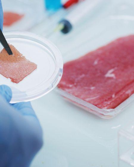"""Une nouvelle forme de viande cultivée à la saveur et la texture """"plus naturelles"""""""