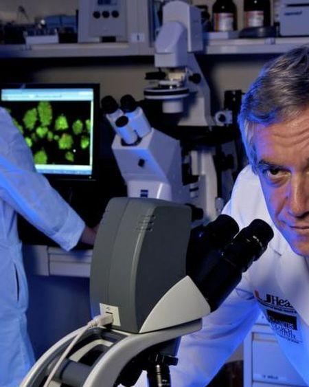 Covid-19 : un traitement prometteur par cellules souches