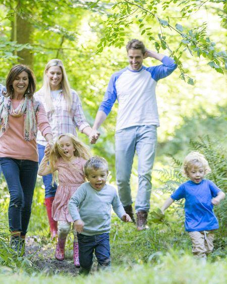 Balade en forêt : évitez les morsures de tiques !