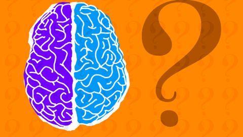 Etes-vous plutôt cerveau gauche ou cerveau droit ?