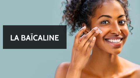 baicaline ingredient