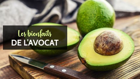 avocat bienfaits