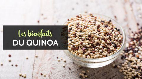 quinoa bienfaits