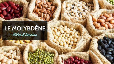 molybdène aliments