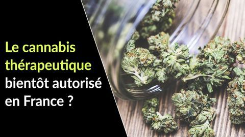 cannabis therapeutique France