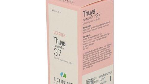 THUYA COMPLEXE N°37 LEHNING