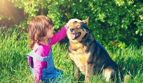 rôle de l'animal pour l'enfant