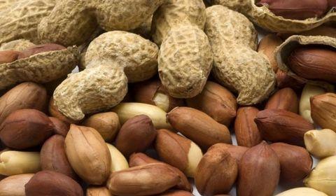 allergie a l arachide