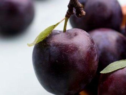La prune - Quels aliments consommer en août ?