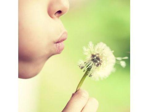 10 remèdes naturels contre les allergies saisonnières