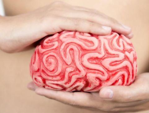 Pourquoi notre intestin est-il notre deuxième cerveau ?
