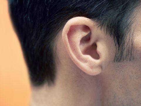 Tout savoir sur le fonctionnement de l'oreille