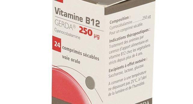 VITAMINE B12 GERDA