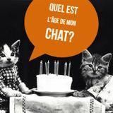 Cum se calculează vârsta de pisica de vârstă umană?'âge du chat en âge humain ?